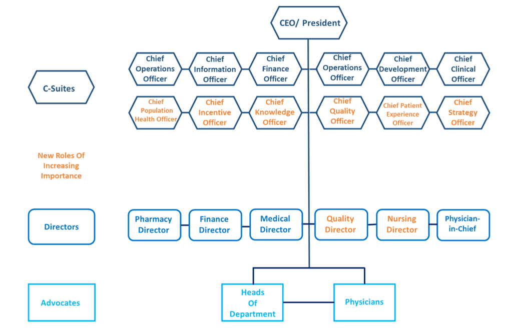 IDN stakeholder structure